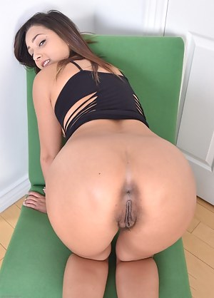 Big Ass Asshole Porn Pictures